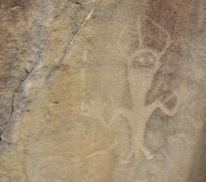 dinopetroglyph